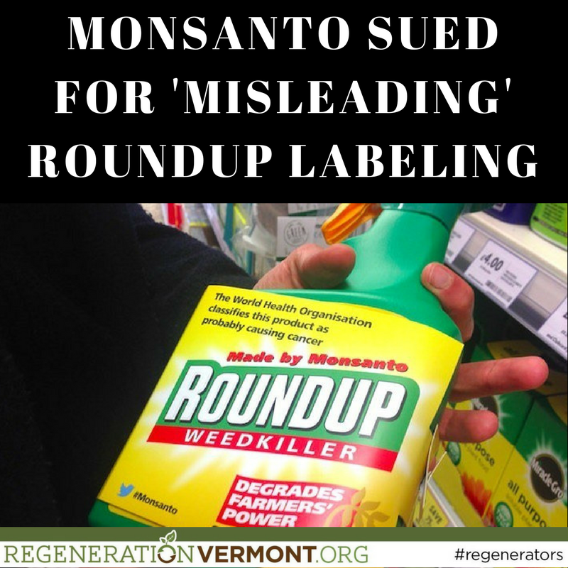 economics monsanto's roundup case study Case studies in benefits and risk of agricultural biotechnology: roundup ready ®  economic and herbicide use impacts of glyphosate-resistant crops.