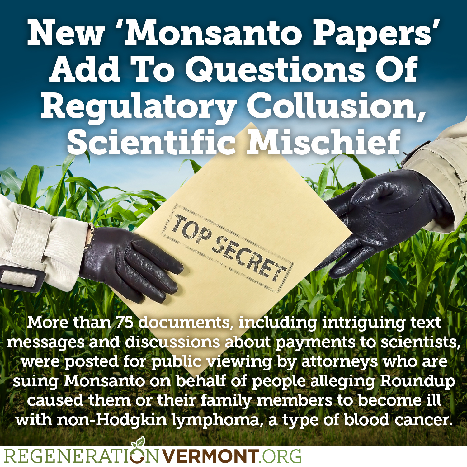 roundup and monsanto essay Ttac » cancer causes » monsanto, corruption, and the cancer causing  corruption, and the cancer causing dangers  by monsanto and saw that roundup.