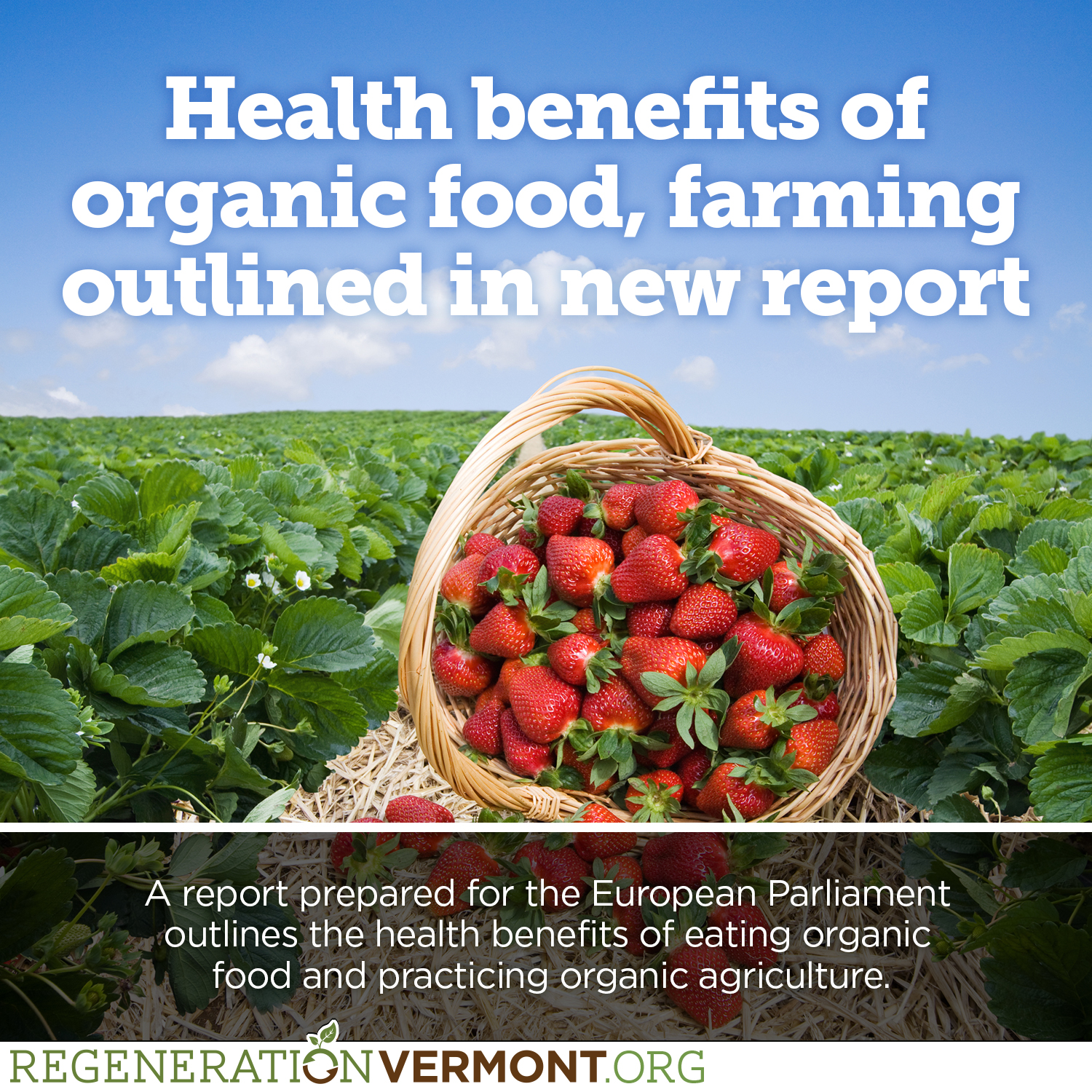 Health benefits of organic food, farming outlined in new